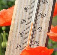 Het wordt nóg warmer: wat je moet doen tijdens deze hitte (en wat niet)